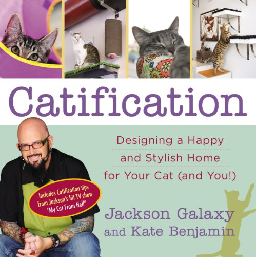 catification jackson galaxy